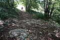 Hiking trail, the Walk of Peace, stage 27, Tolmin, Slovenia to Castelmonte, Italy, EU.jpg
