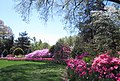 Hillwood Gardens in April (17597740705).jpg