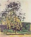 Hodler - Bäume im Ateliergarten - 1917.jpeg