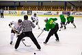 Hokeja spēlē Saeima uzvar Zemnieku Saeimu (5744110012).jpg