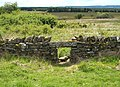 Hole in the Wall - geograph.org.uk - 465355.jpg