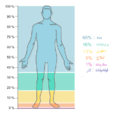Human body composition - Ar.png