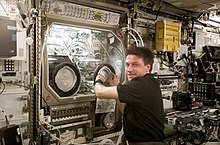 A man wearing a blue polo shirt reached into a large machine. The machine has a large windows at the front with two holes in it for access, and is full of scientific apparatus. Transient space station hardware is visible in the background.