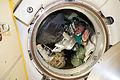 ISS-42 Aleksandr Samokutyayev waves farewell.jpg