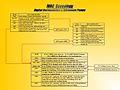 IVAC Genealogy.jpg