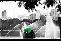 Ibirapuera 1.jpg