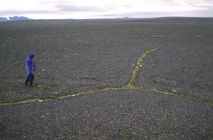 Ice wedge - Ice wedges in Sprengisandur, Iceland