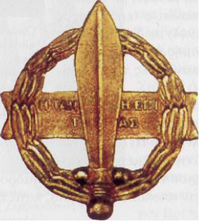 """Το παράσημο του Ιερού Λόχου σε μορφή πολεμικού σταυρού με τη σπαρτιατική ρήση """"Η ΤΑΝ Η ΕΠΙ ΤΑΣ"""""""