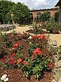 Il giardino delle rose e la limonaia di Villa Guardatoia.jpg