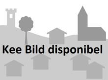Image Placeholder in Luxembourgish Village.png
