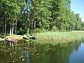 Imbrado sen., Lithuania - panoramio (43).jpg
