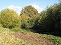 In deepest Lewisham (2) - geograph.org.uk - 1053332.jpg