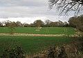 Inchford Brook below Haseleygreen Farm - geograph.org.uk - 1777645.jpg