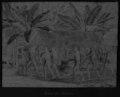 Indígenas (século XIX) – Camacans AN.tif