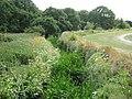 Ingrebourne River in Upminster - geograph.org.uk - 1989476.jpg