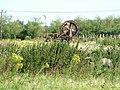 Irrigation system on fruit farm - geograph.org.uk - 1461464.jpg