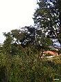 Itupeva - SP - panoramio (172).jpg