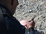 JBER Security Forces force-on-force training 150504-F-XA488-101.jpg