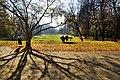 Jabłonna - taras przed pałacem - panoramio.jpg