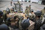 Japan Earthquake Relief 2016 160420-M-AO893-197.jpg