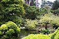 Japanese Tea Garden (San Francisco) (TK21).JPG