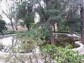 Jardín de Monforte 94.jpg