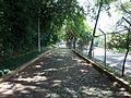 Jardimbotanico10.jpg