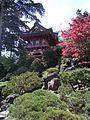 Jardin jap3.JPG