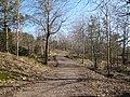 Joggingspår i skogen, Göteborg 2010 - panoramio.jpg