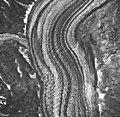 Johns Hopkins Glacier, tidewater glacier with wide moraines, September 17, 1966 (GLACIERS 5495).jpg