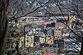 Johnstown late November - panoramio (17).jpg