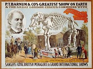 Jumbo - Poster of Jumbo's skeleton