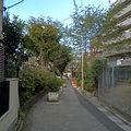 Kanda river Sasazuka branch 2012-10-15.JPG