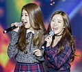 Kang Sehyung and Yoo Taeha at Wapop Concert, 23 January 2016.jpg