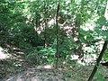 Kaniv Nature Reserve (May 2018) 11.jpg