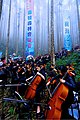 Kaohsiung County scenic photo 12.jpg
