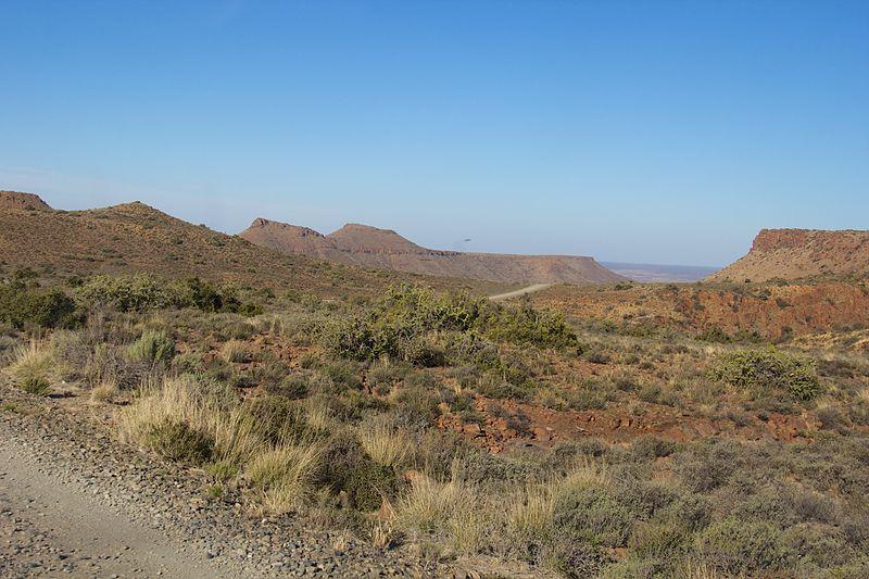 Fichier:Karoo National Park 2014 51.jpg