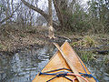 Kayak and beaver work.jpg