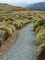 Kepler Track, New Zealand (17).JPG
