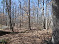 Kings Mountain National Military Park - South Carolina (8558890400) (2).jpg