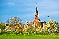 Kirche Schwanau-Nonnenweier Foto MS N1176.jpg