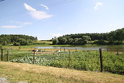 Kojatínský pond in Kojatín, Třebíč District.jpg