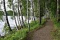 Koknese Parish, Latvia - panoramio (24).jpg