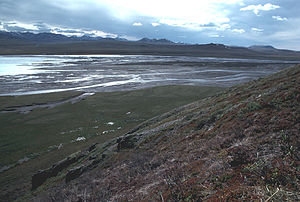 Kongakut River.jpg
