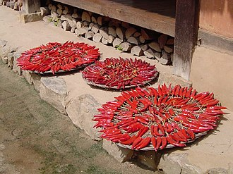Kimchi - Drying chili peppers for kimchi