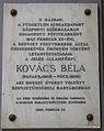 KovacsBela Semmelweis1.jpg