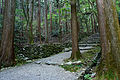 Kozanji Kyoto Kyoto05s5s4592.jpg