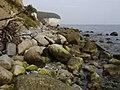Kreideküste auf Rügen 06.JPG