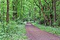 Kreis Pinneberg, Landschaftsschutzgebiet Moorige Feuchtgebiete LSG 56-PI-08 Uetersen Langes Tannen 05.JPG
