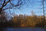 LSG H 00070 Calenberger Leinetal - Teich an der Calenburg (13).jpg